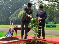 Sambut Kunjungan Sultan Bolkiah, Presiden Jokowi Ajak Sultan Tanam Pohon Perdamaian