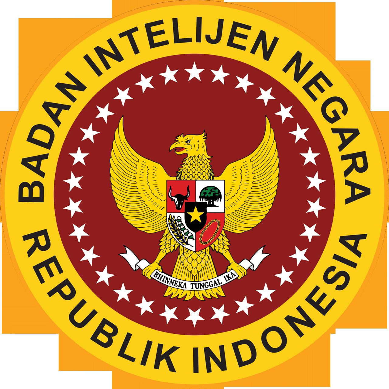 PERNYATAAN RESMI BIN: ADA SATELIT MATA-MATA ASING YANG PANTAU INDONESIA
